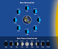 Moon's Orbit and Earth, and Phases
