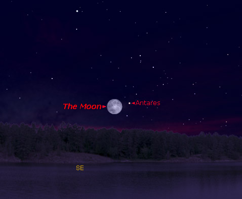 The Biggest Full Moon Of The Year Rides Across The SkyWith One Of The ...